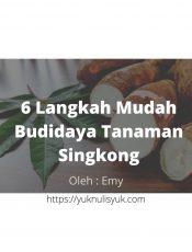 6 Langkah Mudah Budidaya Tanaman Singkong