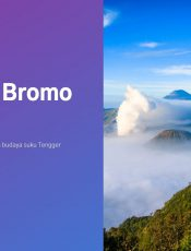 Resume Buku Pesona Bromo